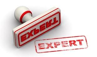 (expert).